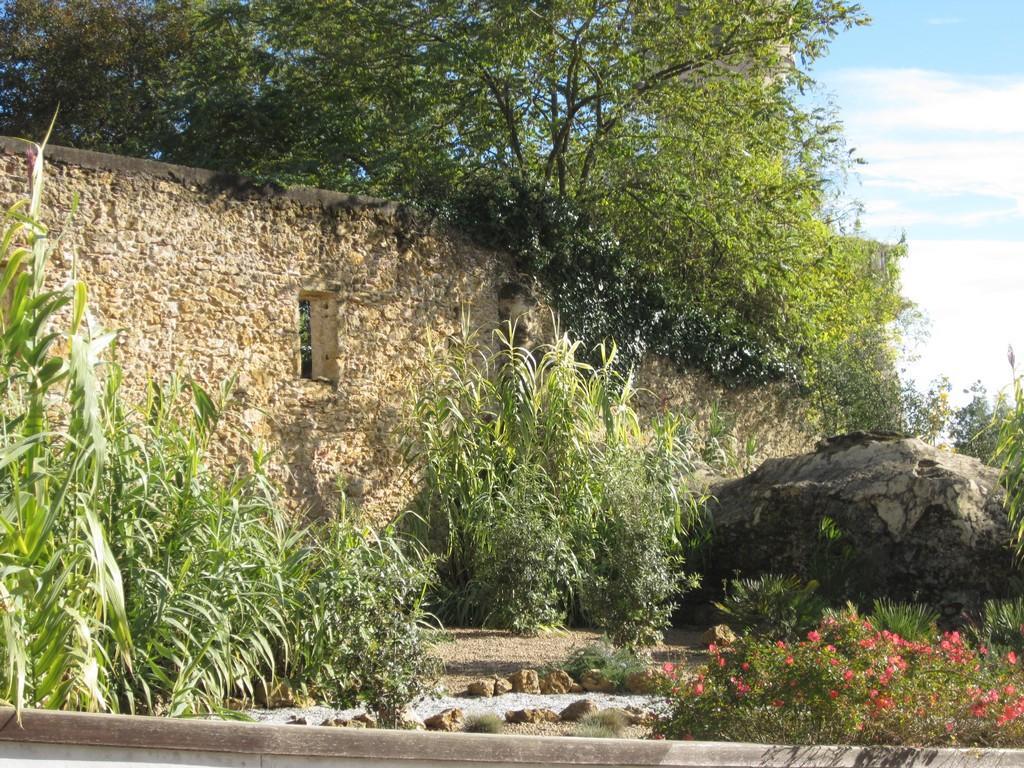 Mur végétalisé / Tartas en images / Tartas, ville attractive ...